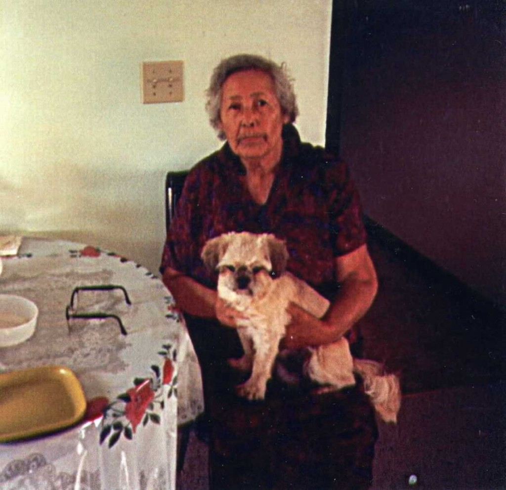 Born near Hays on the Fort Belknap Reservation in 1896, Theresa Chandler Walker Lamebull dedicated much of her later years to language preservation. She taught until shortly before her death in 2007.